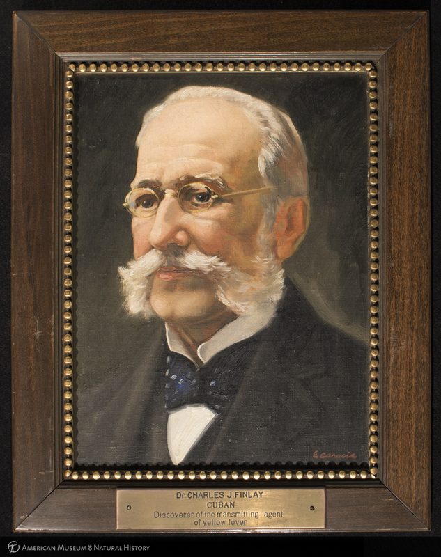 Painting of Dr. Charles J. Finlay, Cuban, discoverer of the transmitting agent of yellow fever by Enrique Caravia Montenegro, [1935]