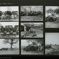 Group portraits from expedition to Africa, photographs mounted to card