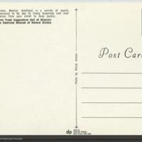 http://lbry-web-002.amnh.org/san/AMNH_postcards/100213323_37v.jpg