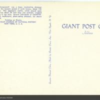 http://lbry-web-002.amnh.org/san/AMNH_postcards/100213323_31v.jpg