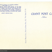 http://lbry-web-002.amnh.org/san/AMNH_postcards/100213323_30v.jpg