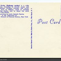 http://lbry-web-002.amnh.org/san/AMNH_postcards/100213323_22v.jpg