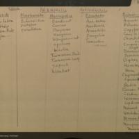 Mammalia Guide I