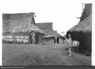 http://lbry-web-002.amnh.org/san/to_upload/Beck-PapuaNewGuinea/NG-5x7-prints/115724.jpg