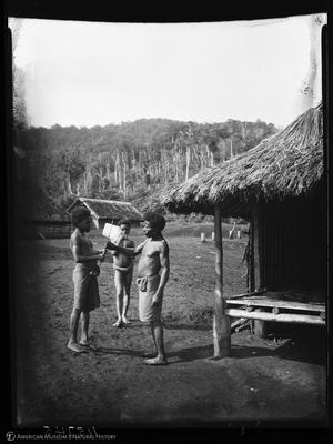 http://lbry-web-002.amnh.org/san/to_upload/Beck-PapuaNewGuinea/NG-5x7-negs/115745.jpg