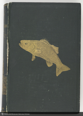 http://lbry-web-002.amnh.org/san/naturalhistories/b10355327.jpg