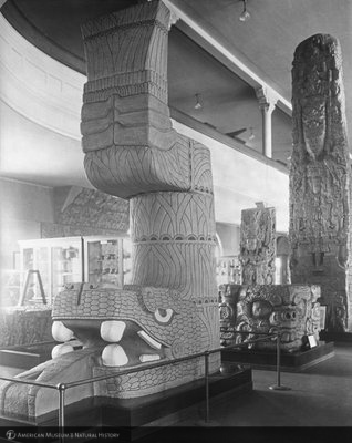 http://images.library.amnh.org/d/t/8x10/0001/00039870_l.jpg