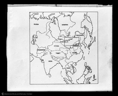 http://lbry-web-002.amnh.org/san/to_upload/asiaticexpedition/248560.jpg
