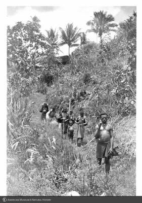http://lbry-web-002.amnh.org/san/to_upload/Beck-PapuaNewGuinea/NG-5x7-prints/115623.jpg