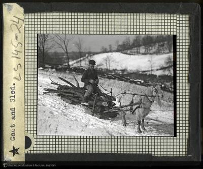 LS195-24.jpg