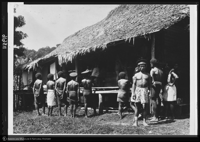 http://lbry-web-002.amnh.org/san/to_upload/Beck-PapuaNewGuinea/NG-5x7-negs/115616.jpg