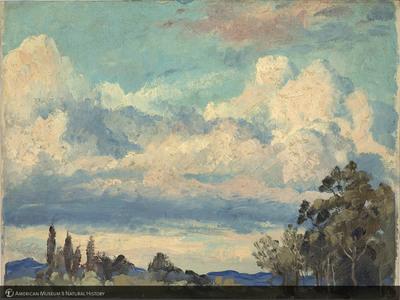http://lbry-web-002.amnh.org/san/palais-de-tokyo-loan-paintings/100101666.jpg