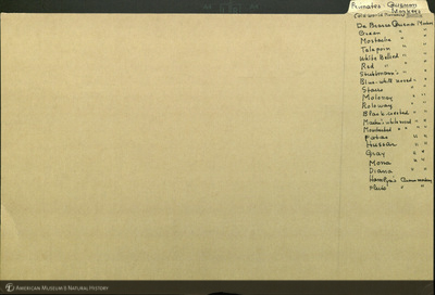 http://lbry-web-002.amnh.org/san/mo_exhibition/ppc_532_b15_f157_001.jpg