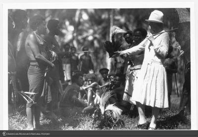 http://lbry-web-002.amnh.org/san/to_upload/Beck-PapuaNewGuinea/NG-5x7-prints/115698.jpg