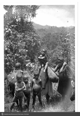 http://lbry-web-002.amnh.org/san/to_upload/Beck-PapuaNewGuinea/NG-5x7-prints/115642.jpg