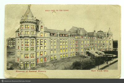 http://lbry-web-002.amnh.org/san/AMNH_postcards/100213323_12.jpg