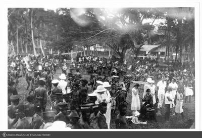 http://lbry-web-002.amnh.org/san/to_upload/Beck-PapuaNewGuinea/NG-5x7-prints/115676.jpg