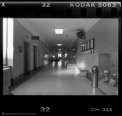 http://lbry-web-002.amnh.org/san/to_upload/35mm_halls_new/600808_32.jpg