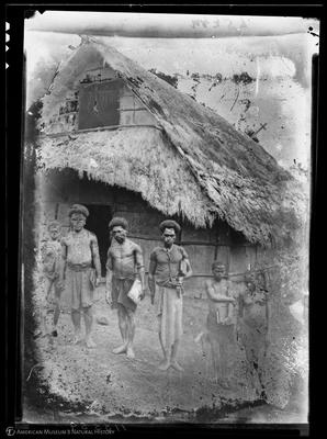 http://lbry-web-002.amnh.org/san/to_upload/Beck-PapuaNewGuinea/NG-5x7-negs/115559.jpg