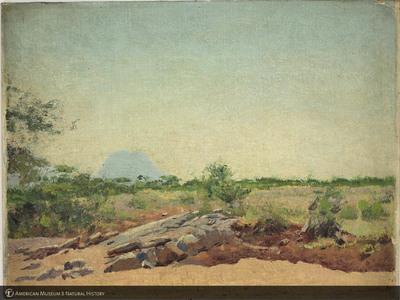 http://lbry-web-002.amnh.org/san/palais-de-tokyo-loan-paintings/100101671.jpg