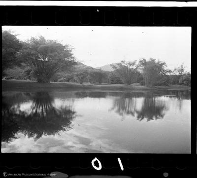 http://lbry-web-002.amnh.org/san/to_upload/35mm/VHC-U010.jpg