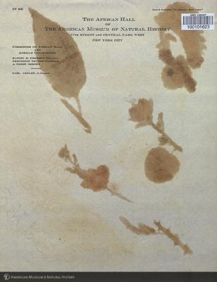 http://lbry-web-002.amnh.org/san/mo_exhibition/art002_b2_13av.jpg