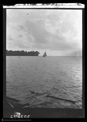 http://lbry-web-002.amnh.org/san/to_upload/Beck-PapuaNewGuinea/W-4x5-negs/273072.jpg