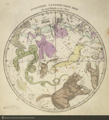 http://lbry-web-002.amnh.org/san/naturalhistories/b11477623_2.jpg