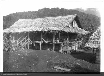http://lbry-web-002.amnh.org/san/to_upload/Beck-PapuaNewGuinea/NG-5x7-prints/115790.jpg