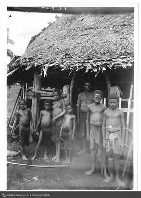 http://lbry-web-002.amnh.org/san/to_upload/Beck-PapuaNewGuinea/NG-5x7-prints/115712.jpg