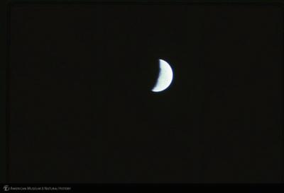 http://lbry-web-002.amnh.org/san/35mm/K10567.jpg