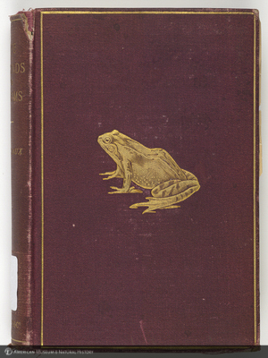 http://lbry-web-002.amnh.org/san/naturalhistories/b10432012.jpg
