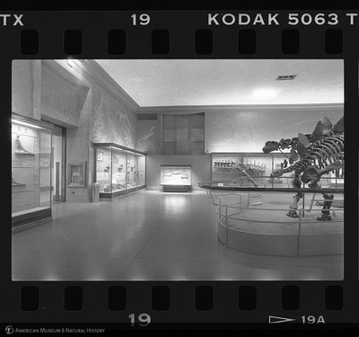 http://lbry-web-002.amnh.org/san/to_upload/35mm_halls_new/600802_19.jpg