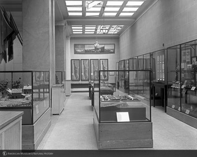 http://images.library.amnh.org/d/t/8x10/0002/00313071_l.jpg