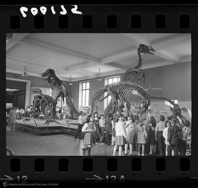 http://lbry-web-002.amnh.org/san/to_upload/35mm_halls_new/600175_12a.jpg