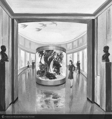 http://images.library.amnh.org/d/t/8x10/0002/00319418_l.jpg