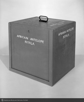 http://images.library.amnh.org/d/t/8x10/0002/00325005_l.jpg