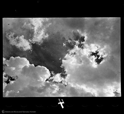 http://lbry-web-002.amnh.org/san/to_upload/35mm/VHC-Q004.jpg