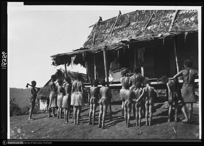http://lbry-web-002.amnh.org/san/to_upload/Beck-PapuaNewGuinea/NG-5x7-negs/115556.jpg