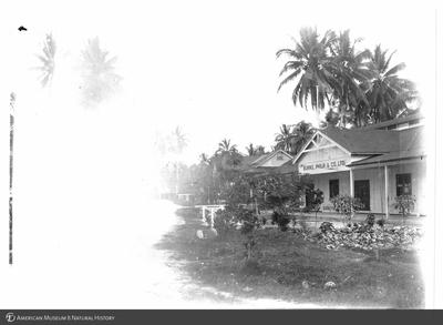 http://lbry-web-002.amnh.org/san/to_upload/Beck-PapuaNewGuinea/NG-5x7-prints/115663.jpg