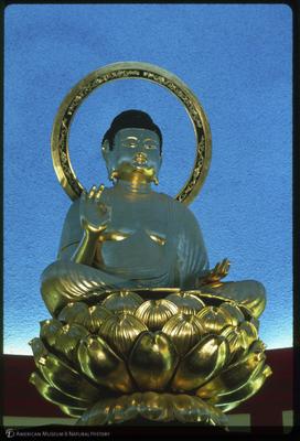 http://lbry-web-002.amnh.org/san/35mm/K12376.jpg