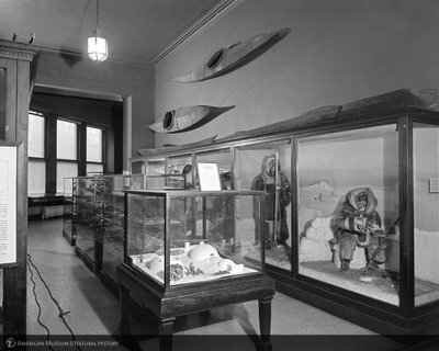 http://images.library.amnh.org/d/t/8x10/0002/00326948_l.jpg