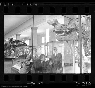 http://lbry-web-002.amnh.org/san/to_upload/35mm_halls_new/602016_21.jpg