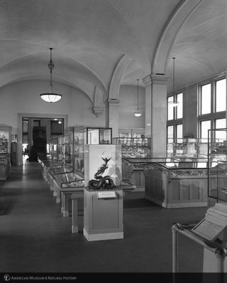 http://images.library.amnh.org/d/t/8x10/0002/00318261_l.jpg