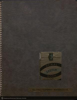 http://lbry-web-002.amnh.org/san/mo_exhibition/art003_b1_01a.jpg