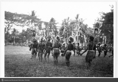 http://lbry-web-002.amnh.org/san/to_upload/Beck-PapuaNewGuinea/NG-5x7-prints/115690.jpg