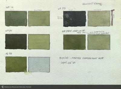 http://lbry-web-002.amnh.org/san/mo_exhibition/art002_b1_38a.jpg