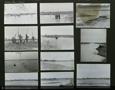 http://lbry-web-002.amnh.org/san/mo_exhibition/ppc_533_b12_f255_005.jpg