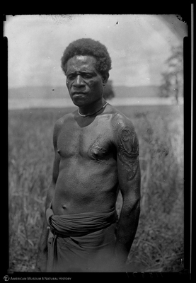 http://lbry-web-002.amnh.org/san/to_upload/Beck-PapuaNewGuinea/NG-5x7-negs/115871.jpg