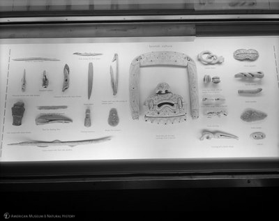http://images.library.amnh.org/d/t/8x10/0002/00333340_l.jpg